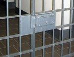 Подозреваемый в похищении Даши Поповой повесился в камере ИВС