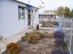 Заботливыми руками сотрудников Нижнепоповского фельдшерско-акушерского пункта создан красивый цветник