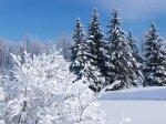 Новогодняя песня: Зима
