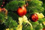 Новогодняя песня: Песенка про елочку