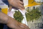 В станице Мешковской Верхнедонского района многодетная мать хранила 12 килограммов марихуаны
