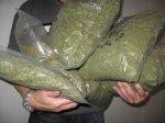 Жительницу Ростовской области задержали, обнаружив у нее килограмм марихуаны
