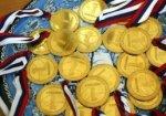 Сборная Ростовской области выиграла четыре золотые медали на командном чемпионате России