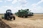 Глава Белокалитвинского района встретилась с сельхозпроизводителями в ходе поездки по полям на юге района