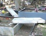 В Камышинском районе Волгоградской области вандалы осквернили кладбище