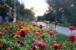 В Волгограде начал свою работу общественный совет по благоустройству