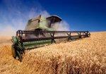 Фермеры Краснодара собрали более 50 тыс тонн зерна