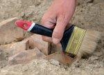 На Тамани археологи обнаружили руины древнегреческой колонии