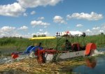 Нерестовые участки Красноярско-Черебаевской поймы Волгоградской области очистили от камыша