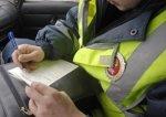 Ростовчанин за оскорбление полицейских отработает один год бесплатно
