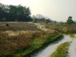 В Волгоградской области построят 125 километров сельских дорог