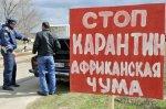 Информация об очаге АЧС в Михайловском районе Волгоградской области подтверждена официально