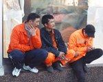 В Дзержинском районе Волгограда задержаны более 200 незаконных мигрантов