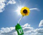 Сочи переходит на экологически чистое топливо