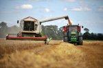Урожай зерновых культур Волгоградских хозяйств превысил прошлогодние показатели