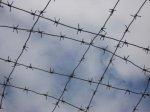 Группа наркосбытчиков в Сочи получила 60 лет совокупного срока
