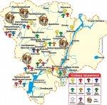 Где в Волгоградских лесах можно собрать много грибов