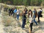 Лесной массив Дружбы народов пополнился новыми саженцами