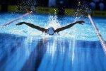 Волгоградские пловцы на Кубке мира завоевали шесть медалей