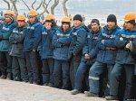 В Краснодарском крае   с начала  года пресекли деятельность 6 преступных групп, легализовывавших мигрантов