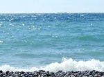 В Сочи прошли различные эко акции посвященные дню Черного моря