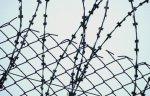 В Ростовкой области по амнистии могут выйти на свободу около 200 тыс человек