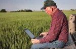 До 1 марта 2014 года главы крестьянских (фермерских) хозяйств должны отчитаться перед ПФР