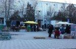 Цветочная ярмарка в Белой Калитве прошла на Театральной площади