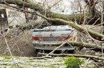 Ураган  оставил без света  5 районов Волгоградской области