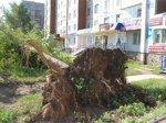 В трех районах Волгоградской области устраняют последствия урагана