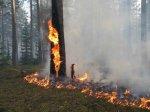 ОГПН по Белокалитвинскому району предупреждает о ландшафтных пожарах