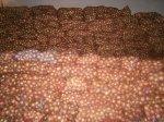 В Ростовскую область контрабандист с Украины перенес полторы тонны лука
