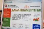 На сайте Пенсионного фонда России появилась версия для слабовидящих