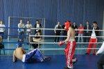 Первенство Ростовской области по кикбоксингу