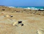 На анапском пляже двое мужчин избили досмерти 24-летнего парня