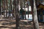 Детский лагерь «Орленок» - отдых и оздоровление вместе!