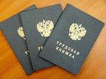 В Ростовской области трудоустроено 659 беженцев из Украины