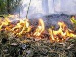 В Волгоградской области в связи с жаркой погодой вновь объявлено штормовое предупреждение
