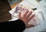Волгоградский директор одной из фирм уклонился от уплаты налогов в 14 млн рублей