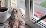 На западе Волгограда из окна 4-го этажа выпала шестилетняя девочка