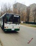 В Ростове автобус №22 сбил пешехода на переходе