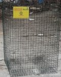 Ростовчанин бесплатно раздает сетки для сбора пластиковых отходов