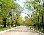Ростовские власти ищут инвесторов для городских парков