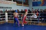 Чемпионат и первенство Ростовской области по кикбоксингу В Белой Калитве