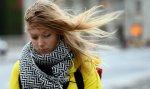 МЧС из-за сильного ветра просит волгоградцев не выходить из дома