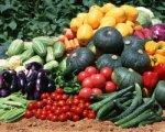 Агентство по развитию предпринимательства Каменского района обеспечит муниципальные учреждения овощной продукцией