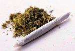 В г. Шахты задержали торговца «травкой» и изъяли 50 грамм марихуаны