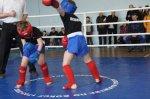 Соревнования по контактному каратэ в Белой Калитве посвященные  Дню вывода советских войск из Афганистана