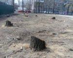 В ростовском парке «Сказка» вырубили 19 деревьев