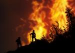 МЧС России: Ландшафтные пожары